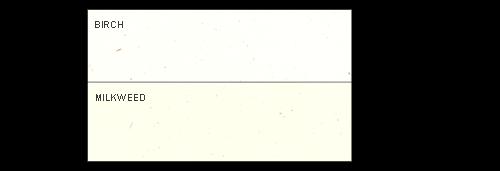 Genesis Matching #10 Envelopes