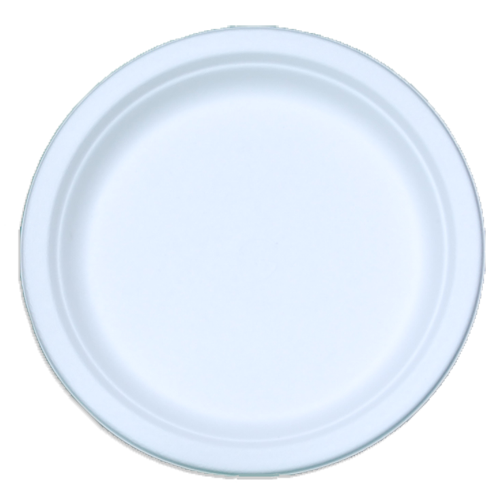 """9"""" Bagasse Sugarcane Plates"""