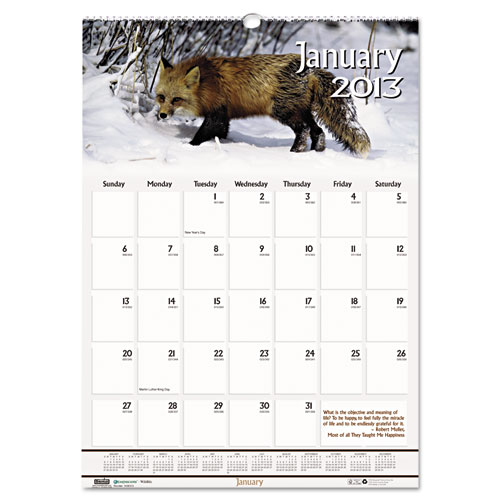 HOD3731 Wildlife Wall Calendar 12x12""