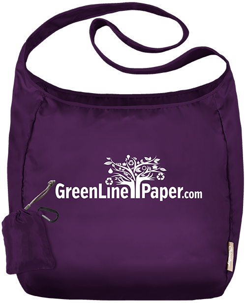 Chico Reusable Bag - your choice of 3 new colors!